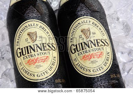 Guinness Extra Stout Bottles On Ice