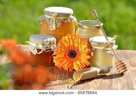 jars full of delicious honey and bee pollen in apiary