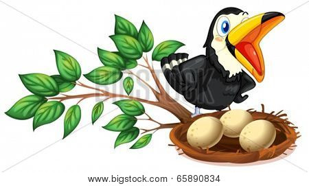 Illustration of a black bird watching the nest with eggs on a white background