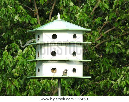 Bird Hotel With Bird And Nest