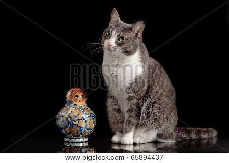 grey cat sitting on black background with matreshka