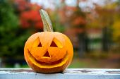 stock photo of jack o lanterns  - A close up shot of a happy jack - JPG