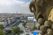 image of gargoyles  - Gargoyle statue with paris aerial view in the background from Notre - JPG