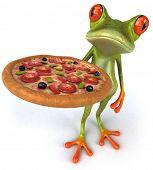 foto of amazonian frog  - Frog - JPG