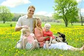 picture of puppies mother dog  - A happy family of four people including mother father young child baby and German Shepherd dog are relaxing outside in a meadow of yellow flowers on a sunny Spring day.