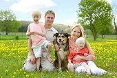 stock photo of puppies mother dog  - A happy family of four people mother father young child and toddler are sitting in a meadow of Dandelion flowers with their German Shepherd mix dog on a beautiful Spring day - JPG