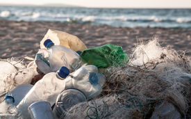 picture of polluted  - Beach pollution - JPG