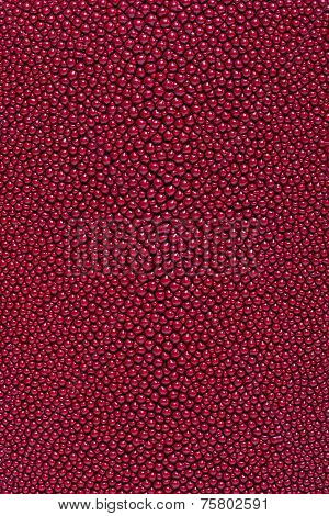 A closeup of a red stingray skin texture