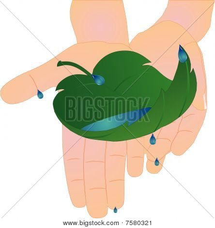 Child holding leaf with water in hands..