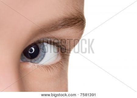 Left Blue Eye Of Child Close Up Isolated On White Background