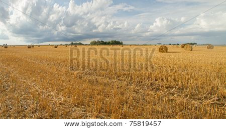 Fields In Blue Sky