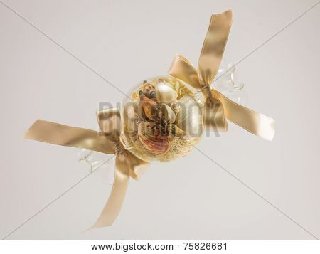 Blown Glass Ball Filled With Seashell Isolated In White Background