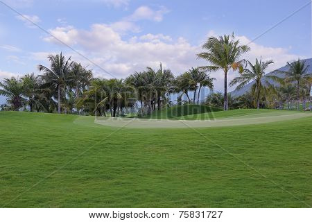 Green Lawn For Golf