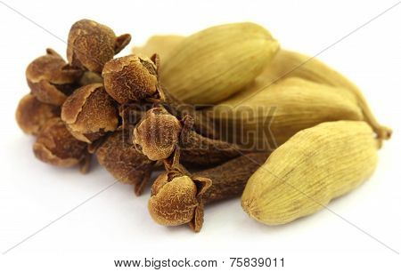 Cardamom Seeds With Cloves