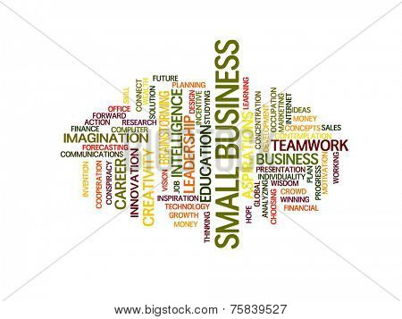 small business strategy in 2015 concept word cloud