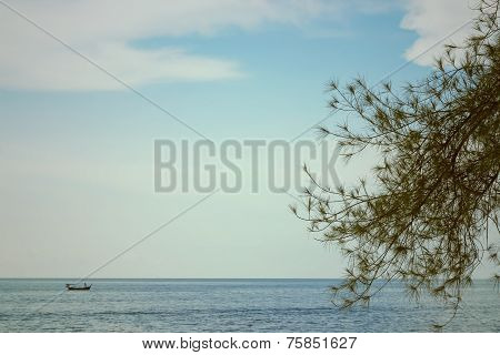 green leaves with blue ocean and sky behing