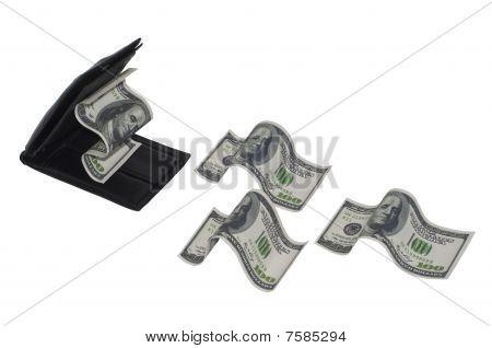 Wallet eating money