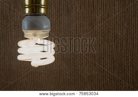 White Cfl Light Bulb Close-up