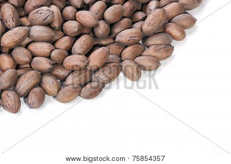 Pile Of Unshelled Pecan Nuts With Copy Space