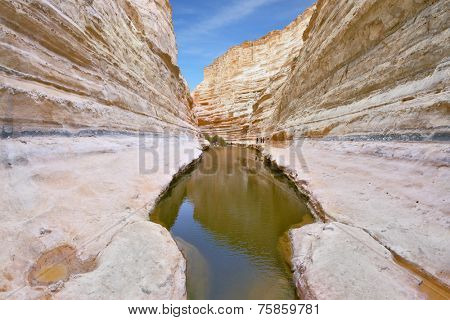 Unique canyon in the desert. Picturesque canyon Ein-Avdat in the Negev desert. Clean cold water in the creek canyon. Sandstone walls apart, like butterfly wings