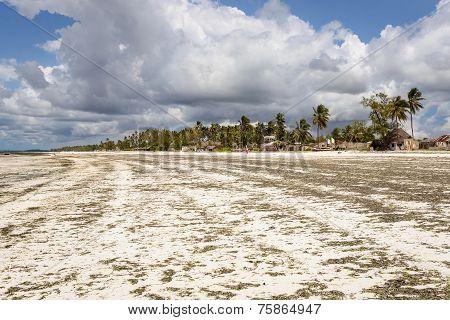 Zanzibar Panorama