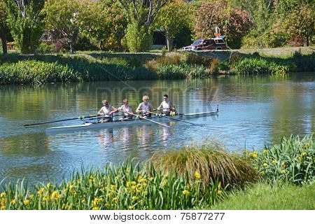 Rowers On The Avon River, Christchurch.