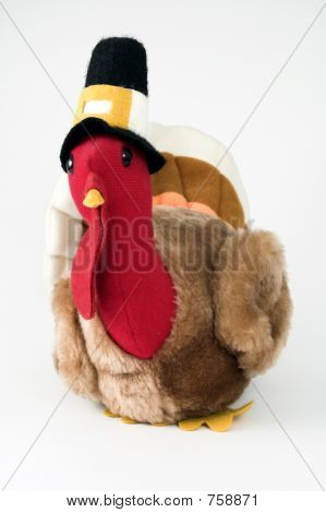 Thanksgiving turkey toy