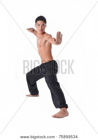 Full young sportsman, Healthy muscular do chinese kung fu