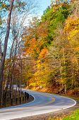 foto of curvy  - A curvy road climbs uphill in a forest displaying the colors of autumn - JPG