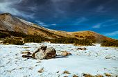 stock photo of saddening  - types of mountain landscapes in the Carpathian mountains - JPG