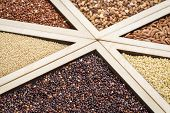 picture of quinoa  - variety of gluten free grains  - JPG