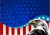 stock photo of american flags  - Bald eagle in front of an American flag - JPG