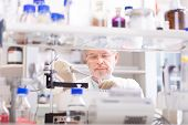 pic of microorganisms  - Life scientist researching in laboratory - JPG