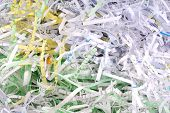 pic of safeguard  - close up of the shredded document paper - JPG