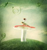pic of fairy-mushroom  - Cute little froggy on the magical mushroom - JPG