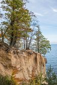 pic of polonia  - Autumnal trees on Kepa Redlowska cliff - JPG