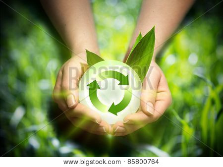 renewable energy in the hands