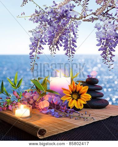 Massage stones , daisies and wisteria - seabed