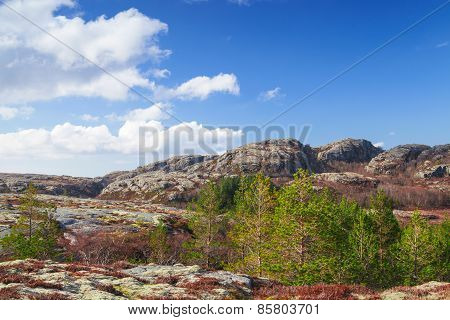 Norwegian Mountain Landscape With Cloudy Sky