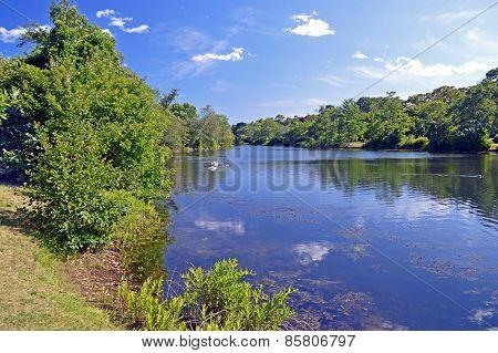 Avon lake, Amityville, NY