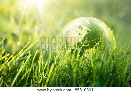 world enviromental concept , Usa globe in the grass