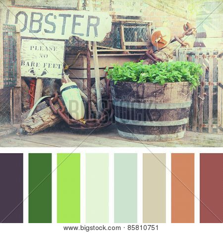 A lobster pots, buoys and fishing equipment on the quayside. Textured retro style processing, in a colour palette with complimentary colour swatches