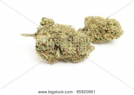 Weed. Marijuana and Cannabis