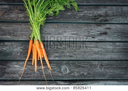 baby carrot on wooden background