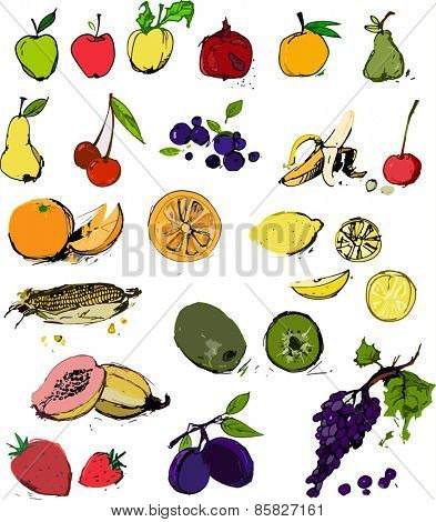 Bunch of delicious fruits set vector illustration in color