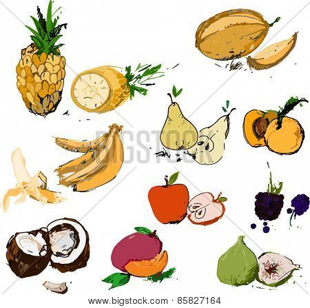 Set of delicious fruits vector illustration in color