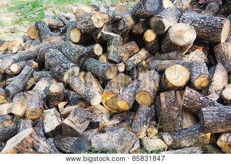 Firewood