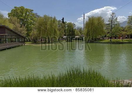 Ariana Lake in Sofia Boris' Garden