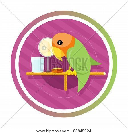 Orange green parro