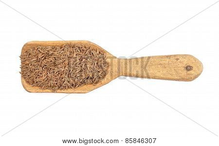 Caraway Seeds On Shovel